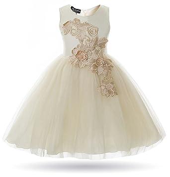 4b20dd91f Amazon.com  CIELARKO Girl Dress Kids Flower Appliques Tulle Wedding ...