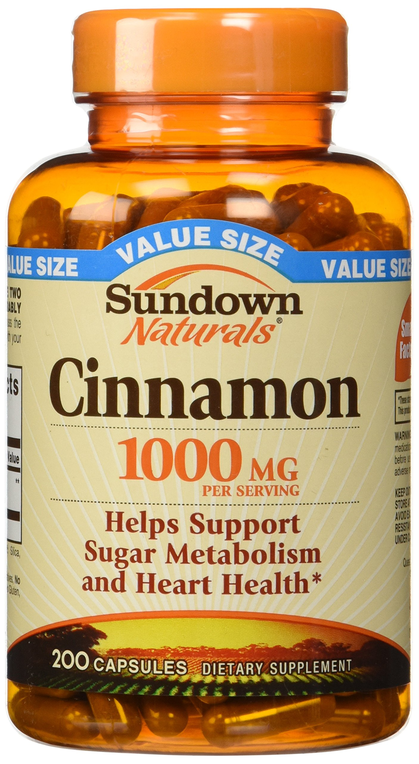 Sundown Naturals Cinnamon 1000 Mg Capsules Value Size, 200 Count pack of 2