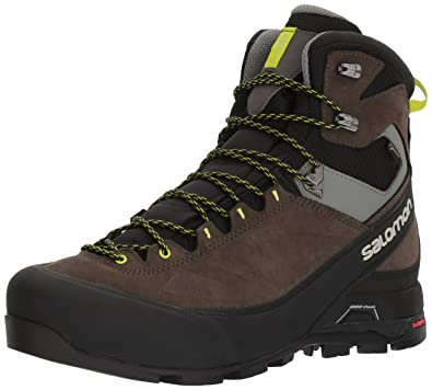 7a0339ef335 Amazon.com | Salomon Men's X Alp MTN GTX Mountain Boots Black/Beluga ...