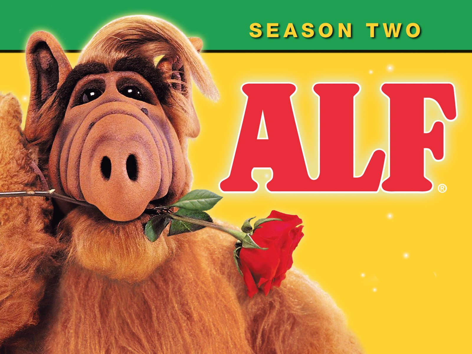 amazoncom alf season 2 - Alf Halloween Episode