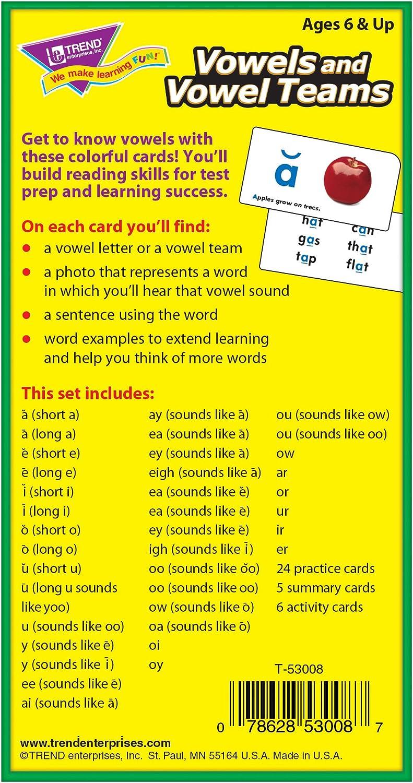 Trend Enterprises Inc T-53907 Vowels and Consonants Skill Drill Flash Cards Assortment