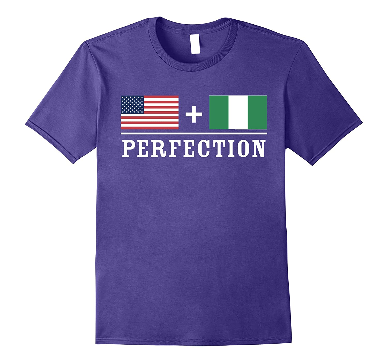 American  Nigerian  Perfection Flag T-Shirt-Vaci