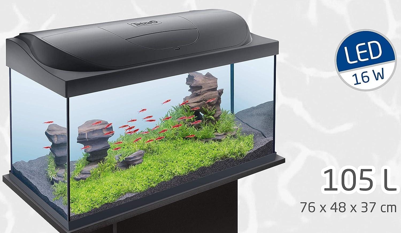 Tetra 283916 Starter Line Acuario de Juego Completo con iluminación LED, Estable 105 L Principiantes Platillos: Amazon.es: Productos para mascotas