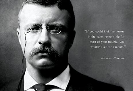 Quotes By Theodore Roosevelt Enchanting Amazon Theodore Roosevelt Photo Picture Poster Framed Quote If