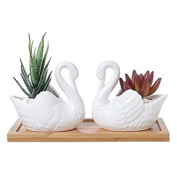 Set de 2 blanco de cerámica (Swan macetas suculentas/velas Portavelas con bandeja de madera de bambú): Amazon.es: Jardín