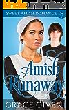 Amish Runaway: Sweet Amish Romance