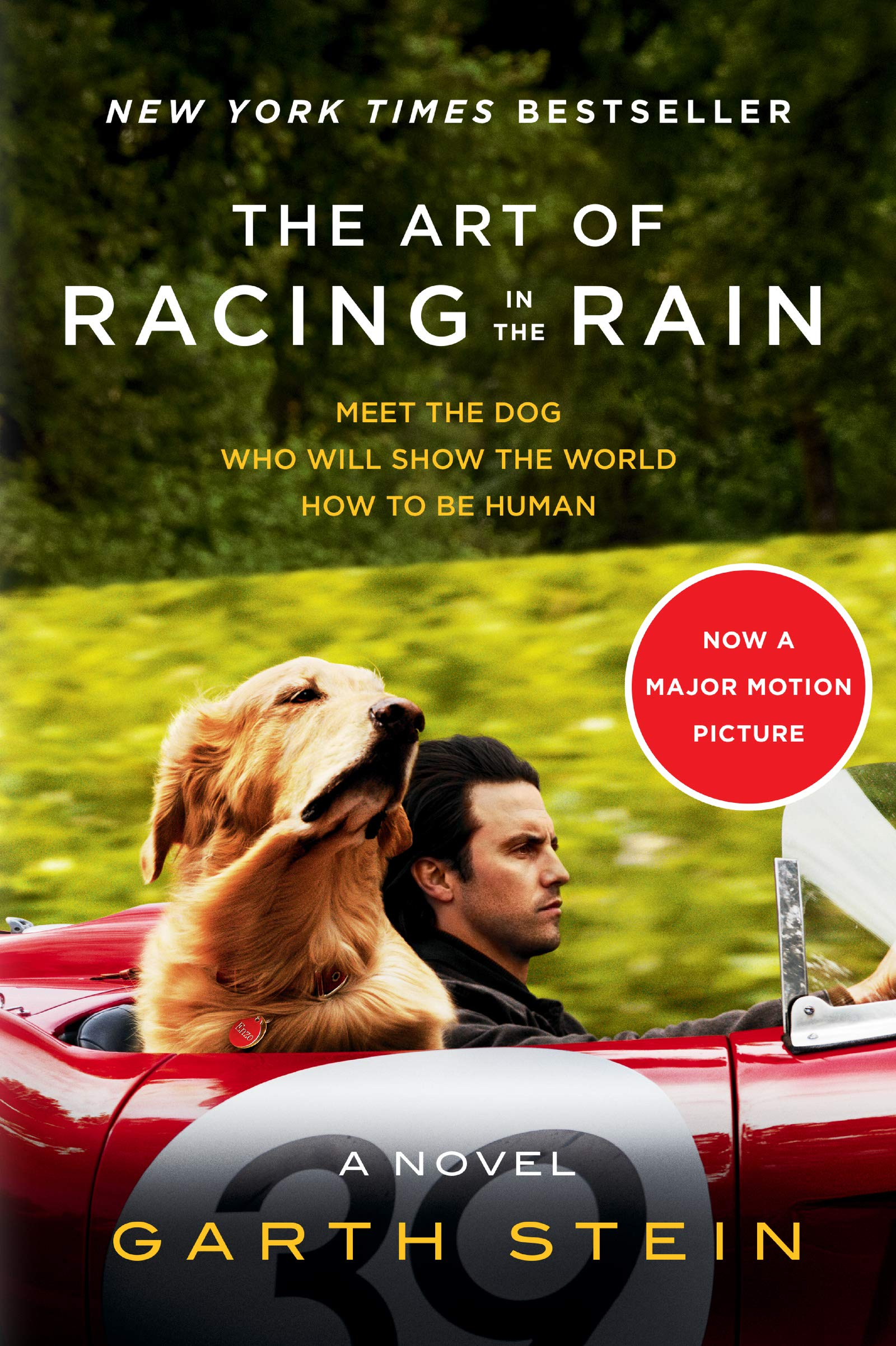 Amazon.com The Art of Racing in the Rain Tie,in A Novel