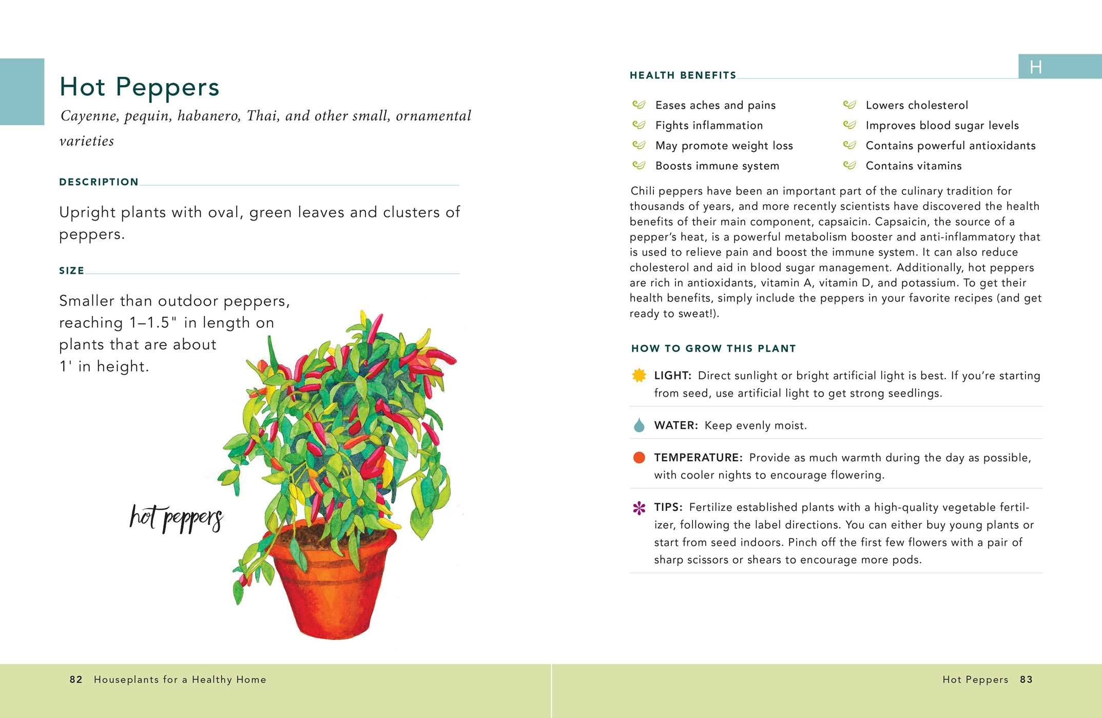 Houseplants For A Healthy Home 50 Indoor Plants To Help You Breathe Better Sleep Better And Feel Better All Year Round Vanzile Jon 9781507207291 Amazon Com Books,Budget Friendly Home Bar Ideas On A Budget