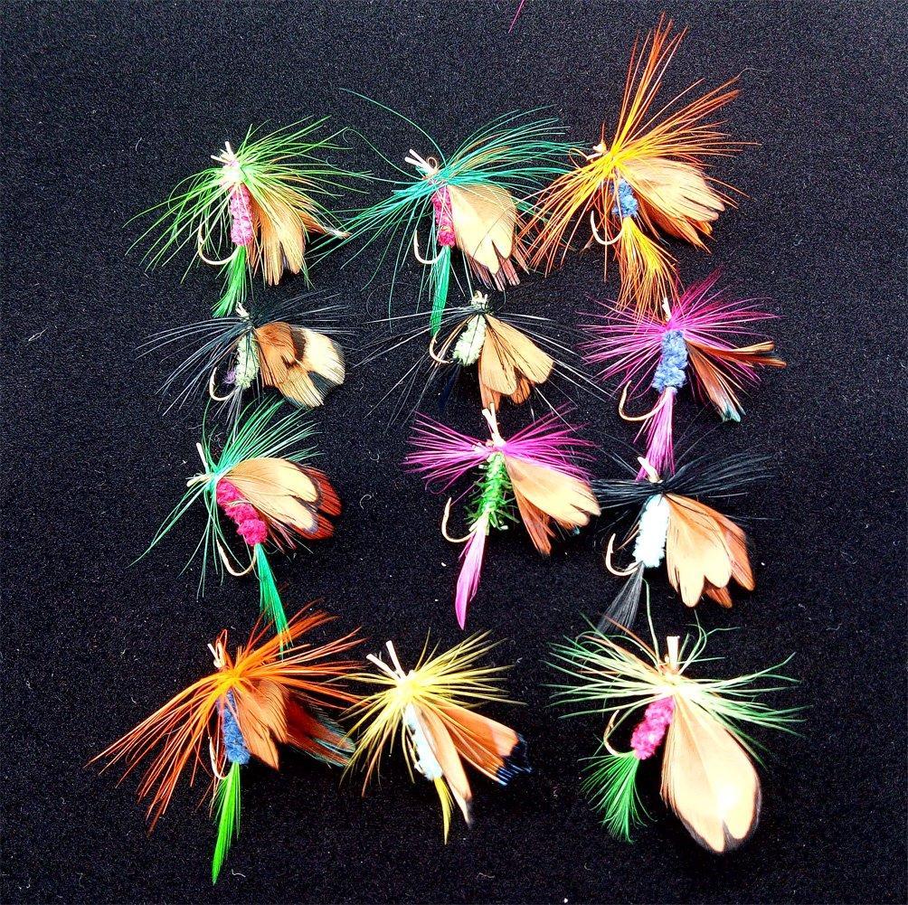 Findingway 12 St/ück Trocken Fliegen K/öder Fliegenfischen Forellen K/öder Angel Imitate Kunstk/öder Saibling Spezial Regenbogenforelle