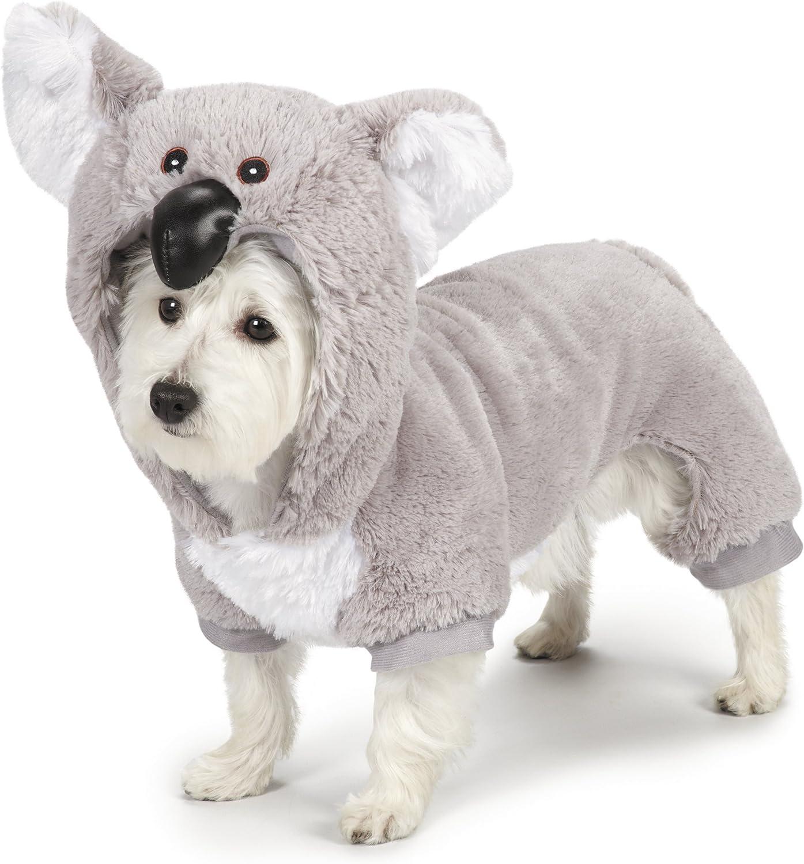Zack y Zoey Koala Disfraz de Perro, XL: Amazon.es: Productos para ...