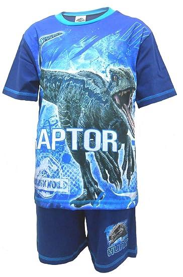 Jurassic World Raptor Boys Shortie Pajamas 4-5 Years