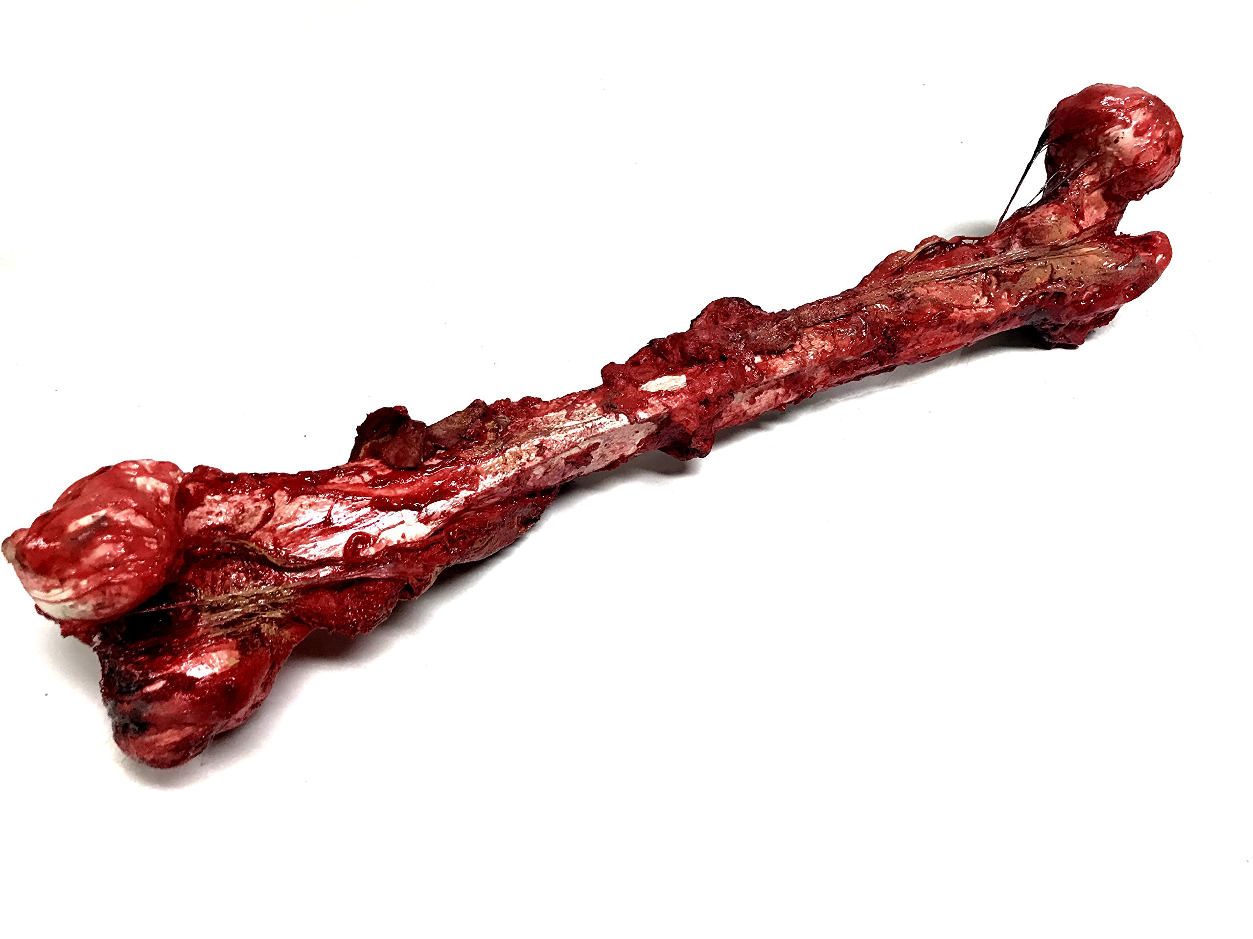 NewRuleFX Bloody, Grisly Femur Bone with Skin and Gore - Full Size FX Prop by NewRuleFX (Image #3)