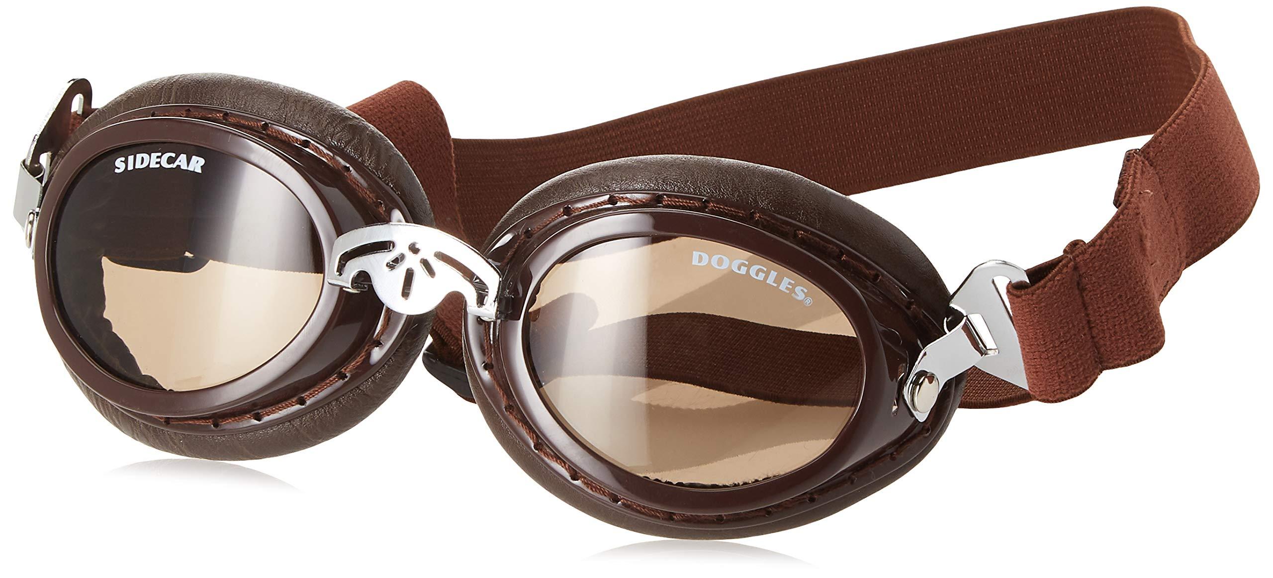 Sidecar Eyewear, one Size, Copper by Doggles