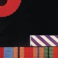 The Final Cut (Vinyl)