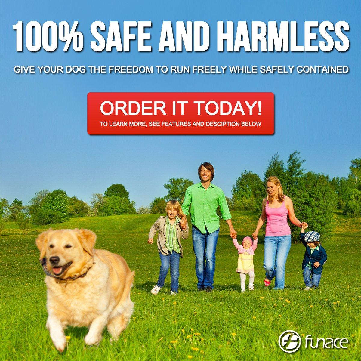 Amazon.com : Radio Wave Electric Dog Fence System by FunAce - Easy ...
