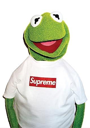 """Résultat de recherche d'images pour """"supreme grenouille"""""""