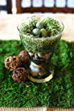 Byher Dried Moss Table Runner for Party Garden