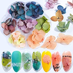 45 Pcs Dried Flower Nail Art Real Natural Flowers Nail Art Decoration Accessories 3D Dry Floral Petals Nail Stickers for Nail Art Designs Nail Decals Nail Supplies for 3D Nail Art Acrylic UV Gel Tips