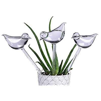 E-KAY 3 Pack Plant Waterer Self Watering Globes,Bird Shape Design Hand Blown Transparent Durable Clear Glass Aqua Bulbs,İndoor and Outdoor Automatic Globe: Garden & Outdoor