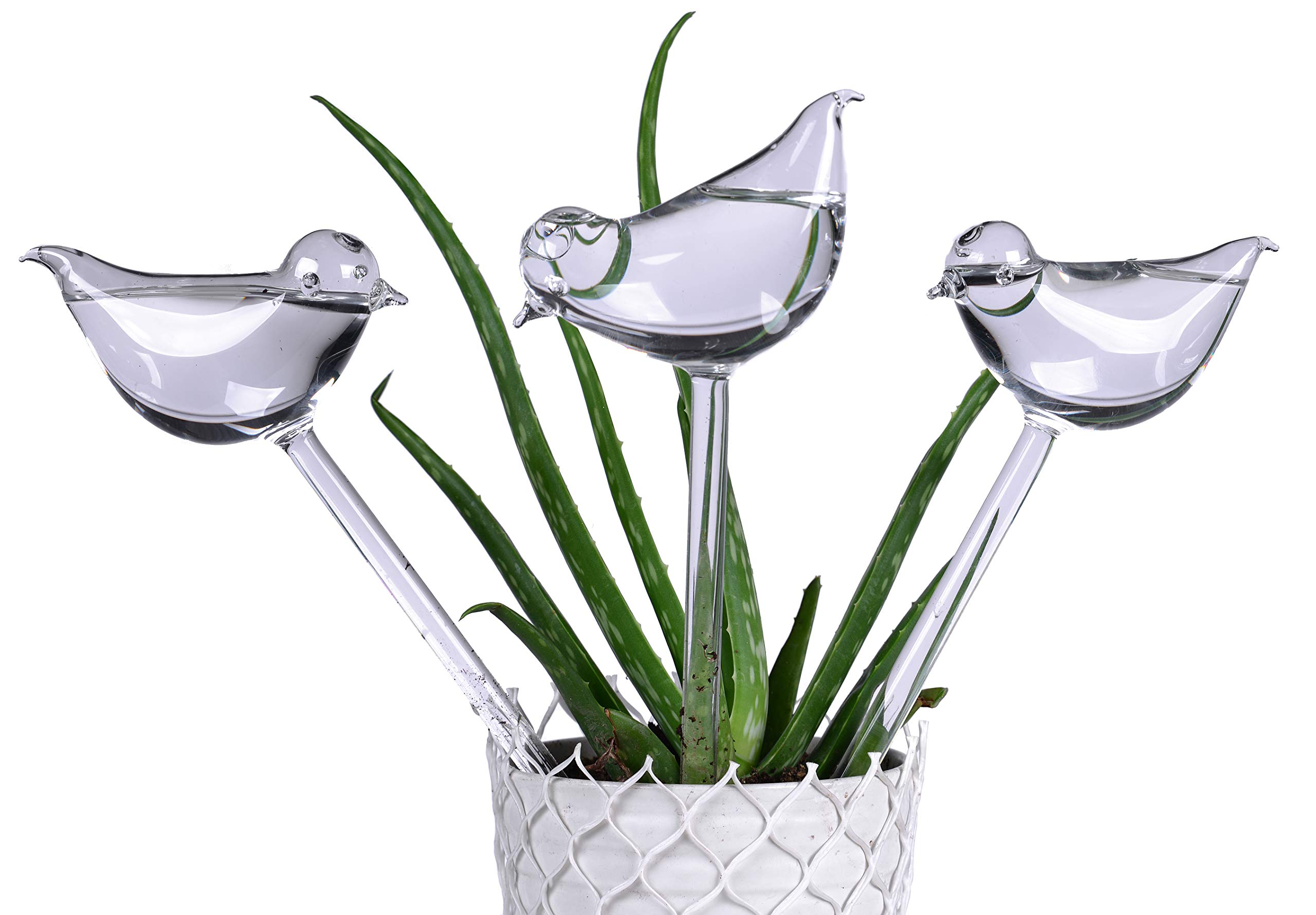 3 Pack Plant Waterer Self Watering Globes,Bird Shape Hand Blown Transparent Mini Durable Clear Glass Aqua Bulbs by E-kay