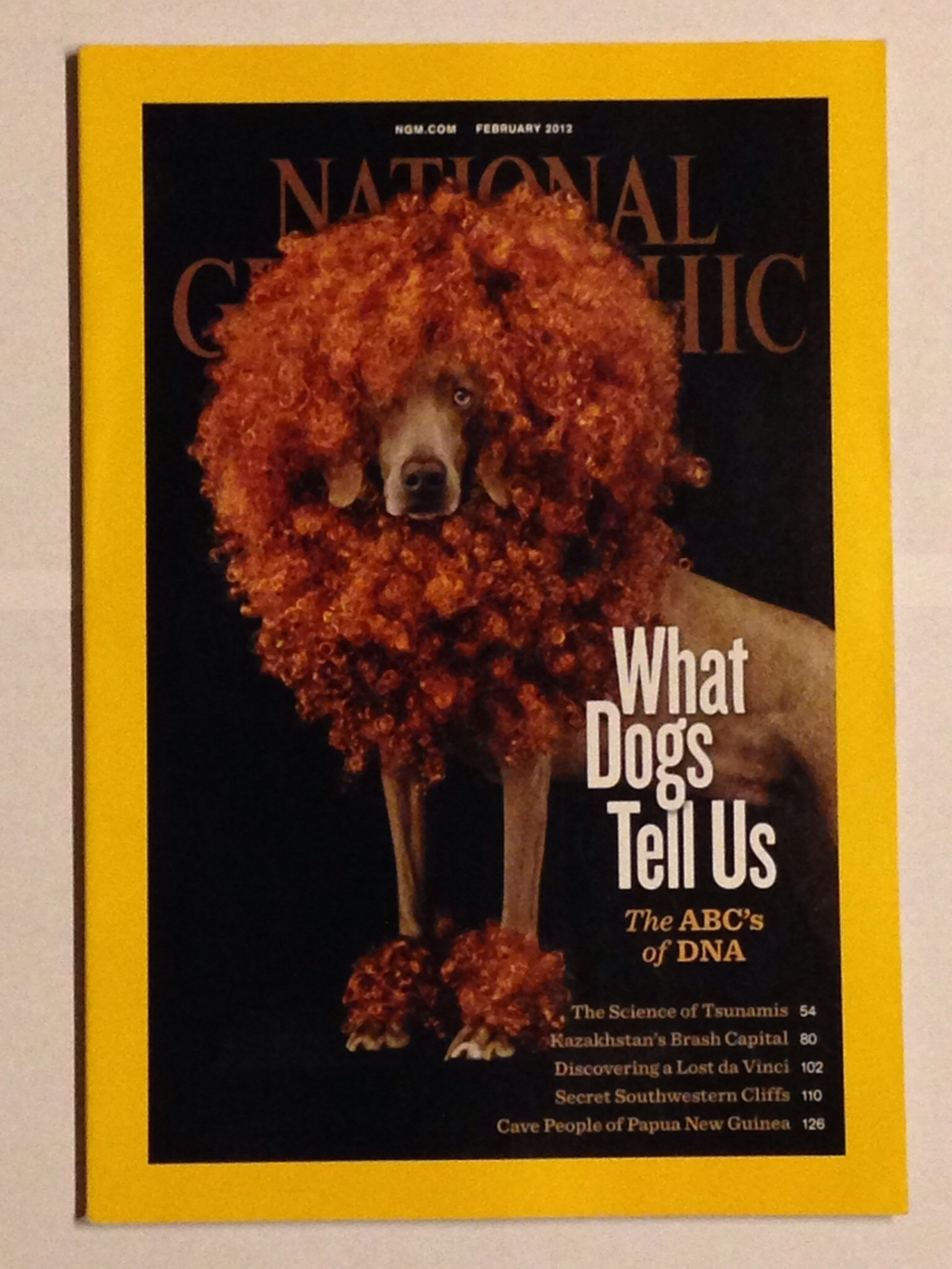 Download NATIONAL GEOGRAPHIC MAGAZINE FEBRUARY 2012 pdf
