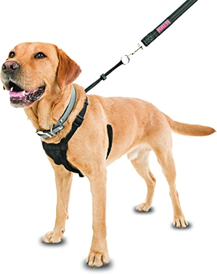 Company of Animals HALTI No-Pull Harness Small: Amazon.es ...