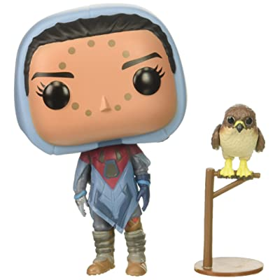 Funko POP! Games: Destiny Hawthorne with Hawk Collectible Figure, Multicolor: Funko Pop! Games:: Toys & Games