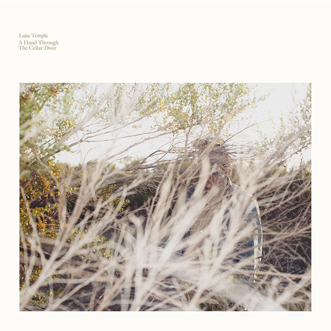 Vinilo : Luke Temple - A Hand Through The Cellar Door (LP Vinyl)
