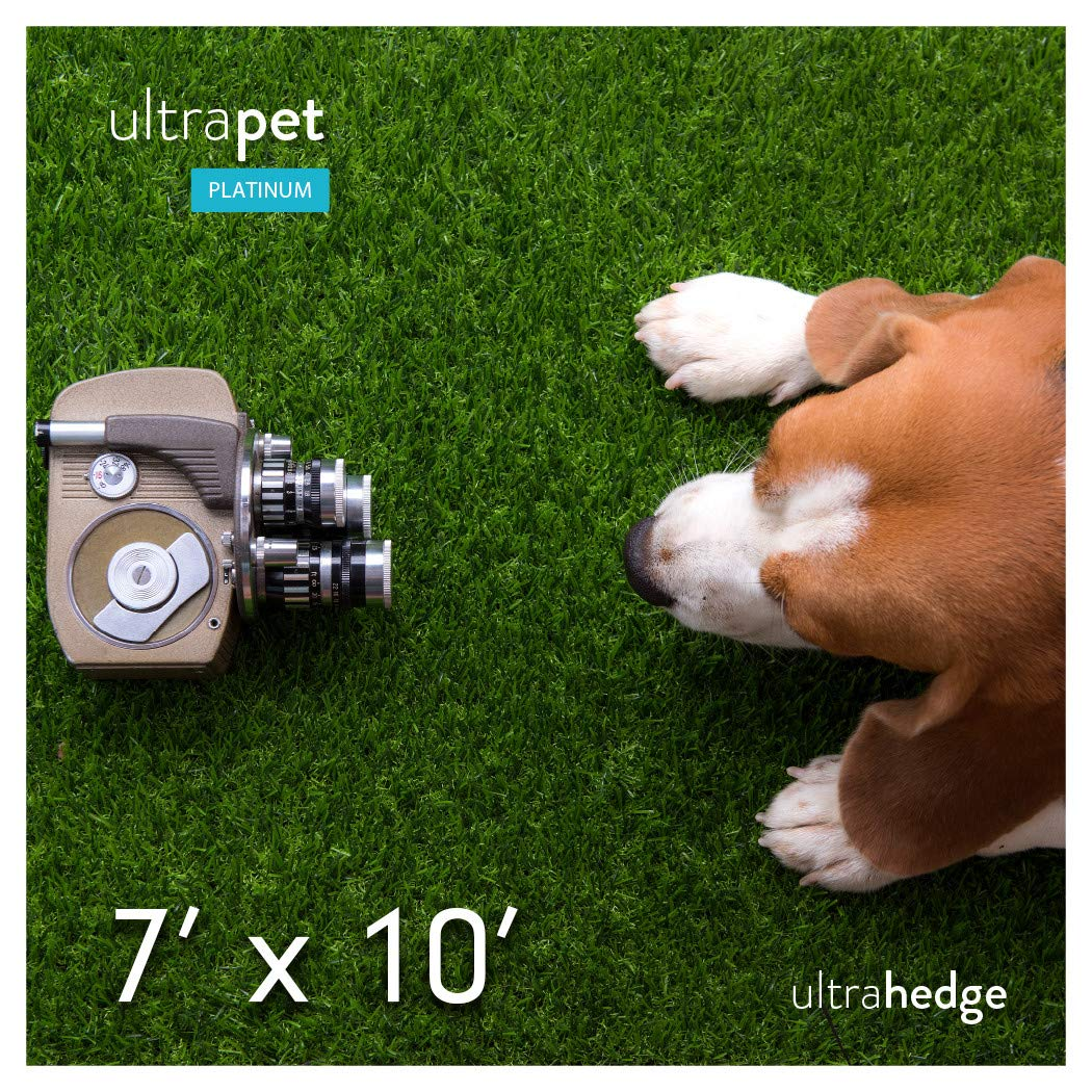 UltraHedge UltraPet Platinum 7 x 10 Ft Artificial Grass for Pet Dog Potty Outdoor Indoor Green Faux Fake Grass Decor Synthetic Grass Mat Rug Pad Turf 70 SqFt 1.13'' Tall Blades 60 oz Face Weight