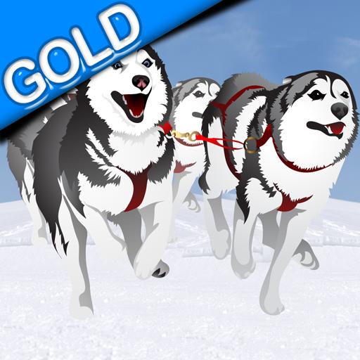 trenós puxados por cães inverno corrida: o canino trenó de gelo frio no pólo norte - Edição de