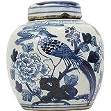 Blue and White Porcelain Chinese Bird Motif Ginger Jar