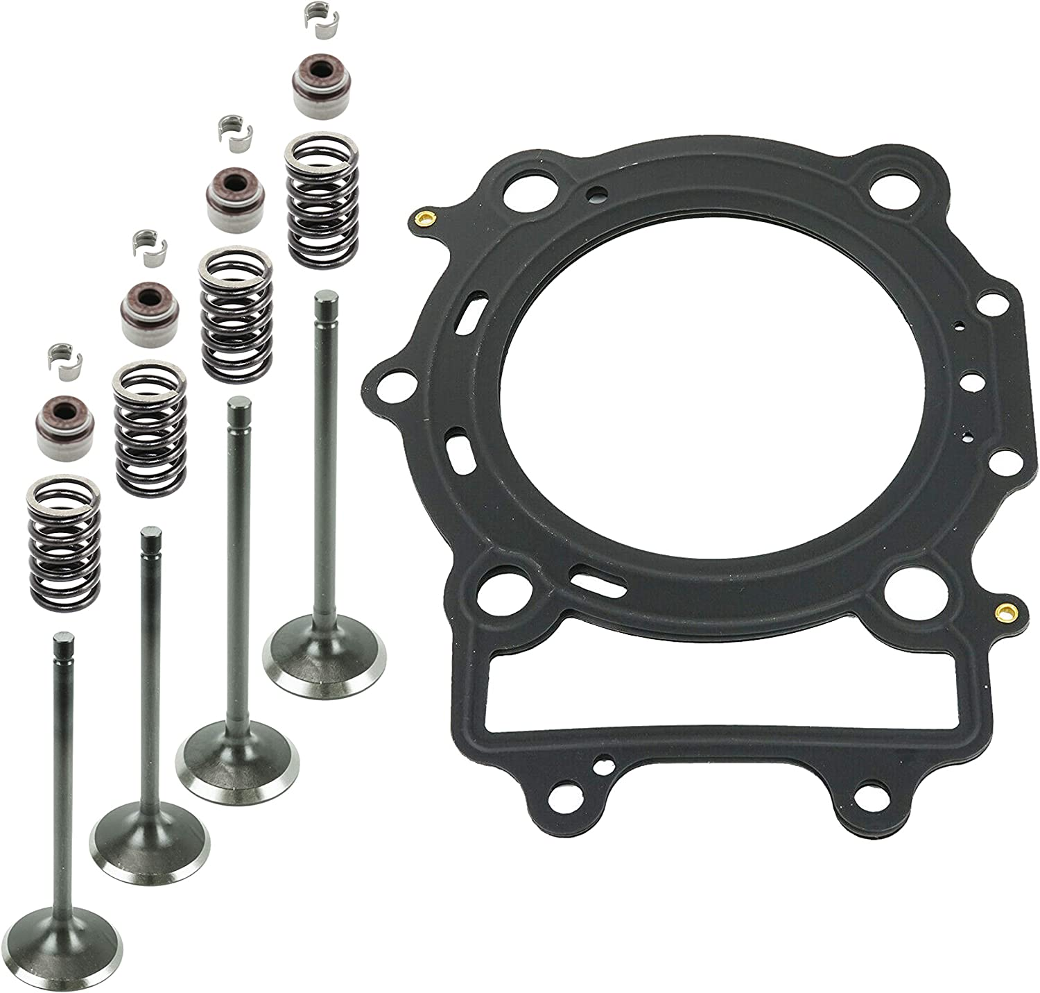 Caltric Cylinder Head Valve Gasket Kit Compatible With Arctic Cat 500 4X4 H1 TRV XT 2009 2010 2013