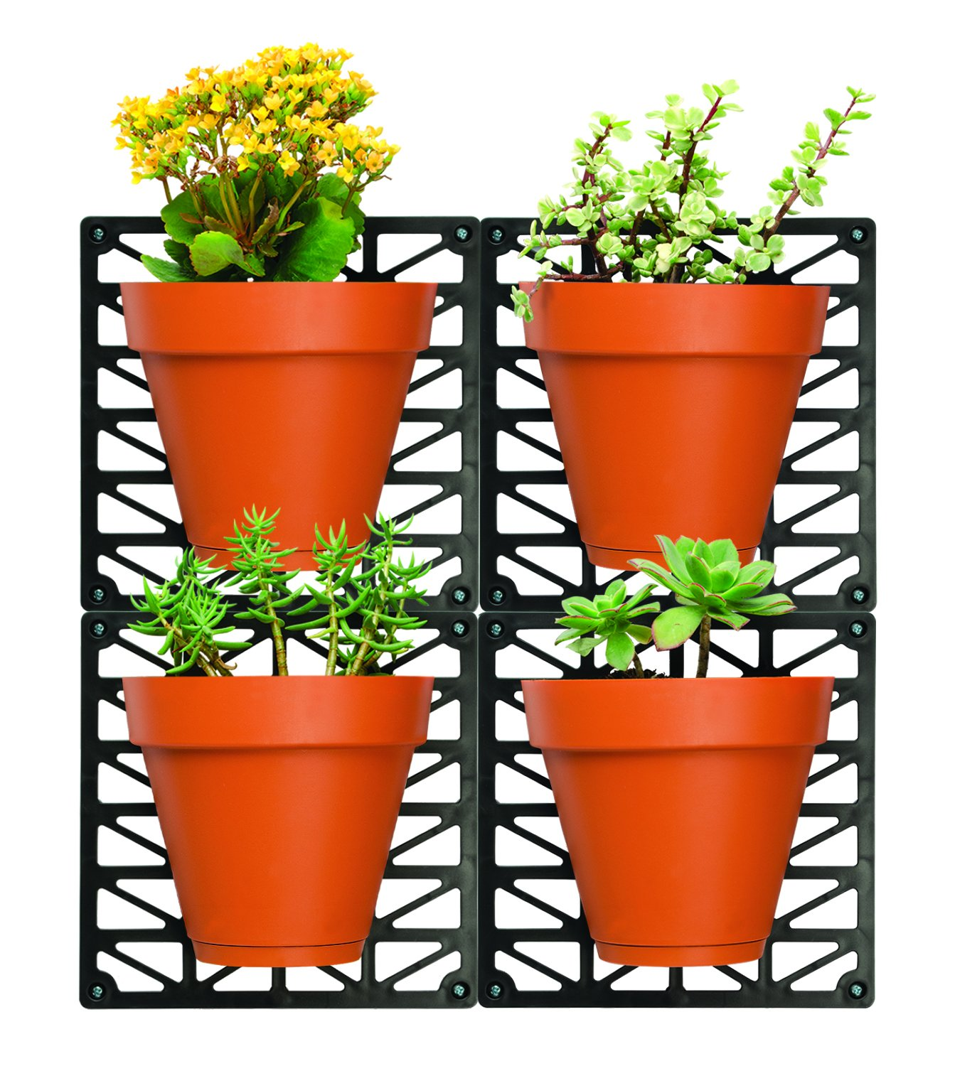 Ideaworks Wall-Mount Planter Set-Decorate Wall with Real Plants - Includes 4 Wall Mounts & 4 Planters-Great for Indoor & Outdoor Walls - Includes Installation Hardware