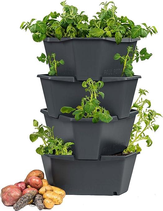 PAUL POTATO Maceta par el Cultivo de Patatas - 4 Partes - Diseño Innovador - Ideal para el Jardín, Balcón - 4 x 14 L: Amazon.es: Jardín