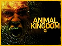 Animal Kingdom by Tnt