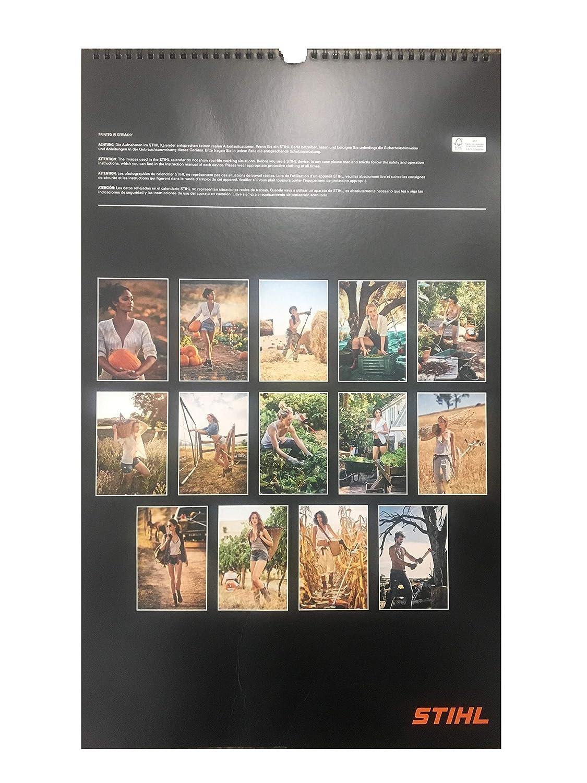 Calendario Stihl.Amazon Com Genuine Stihl 2019 Wall Calendar Office Products