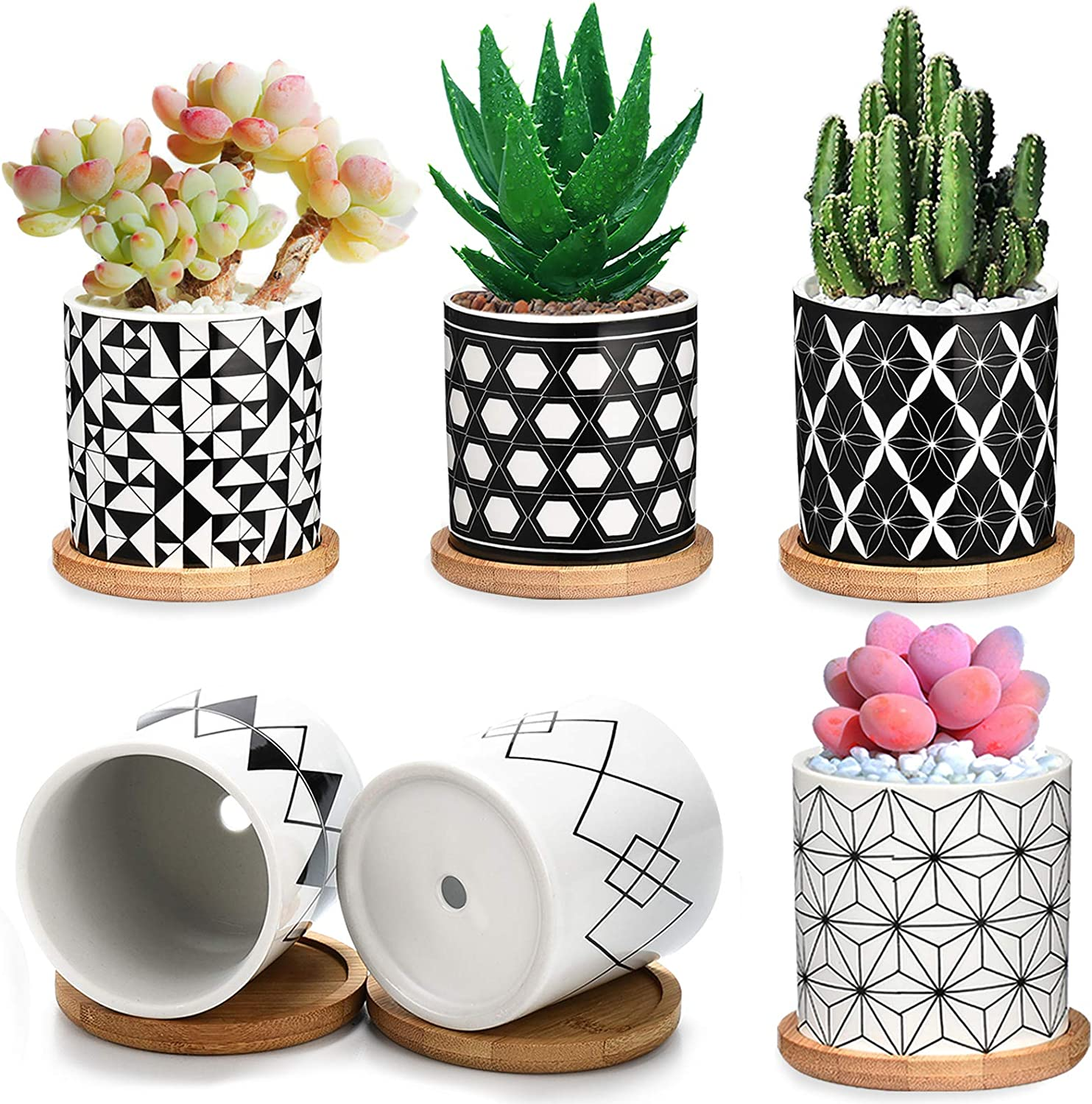 Succulent Pots 6 Pack,3 Inch Ceramic Planter with Drainage and Bamboo Tray, Geometric Patterns Small Plant Pots Decor for Home and Office - Plants NOT Included ?2021 New Upgraded?
