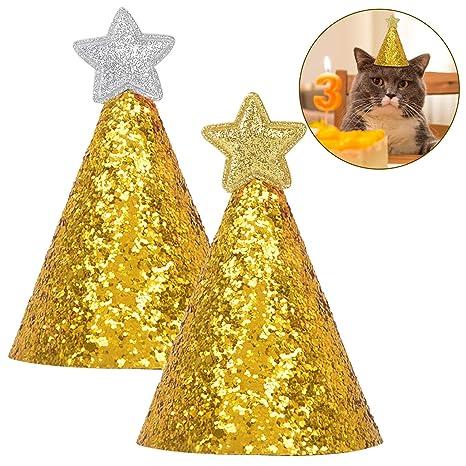 Legendog Mascota Cumpleaños Sombrero Estrella Decoración ...