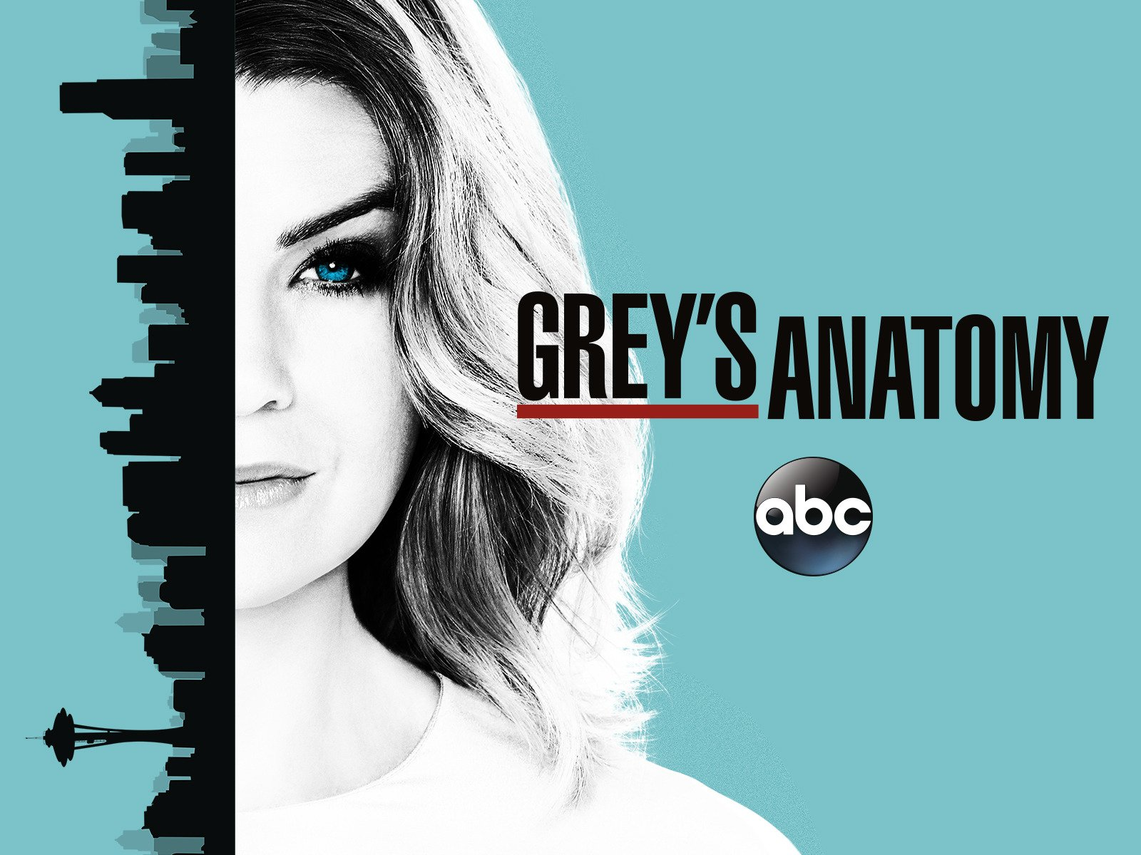 Amazon.com: Grey\'s Anatomy Season 13