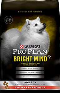 Purina Pro Plan BRIGHT MIND Adult Dry Dog Food