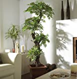 Luxury Artificial Japanese Fruticosa Tree, Stylish Replica Indoor Plant - 165cm Tall