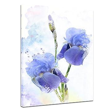 Kunstdruck Reproduktion - Aquarell - Iris Blumen - Bild auf Leinwand ...