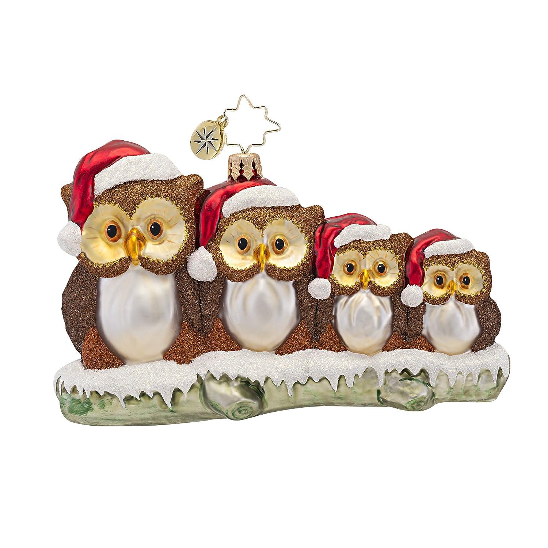 Ordinary Owl Christmas Ornament Part - 11: Amazon.com: Christopher Radko Owl In The Family Ornament, 1016787: Home U0026  Kitchen