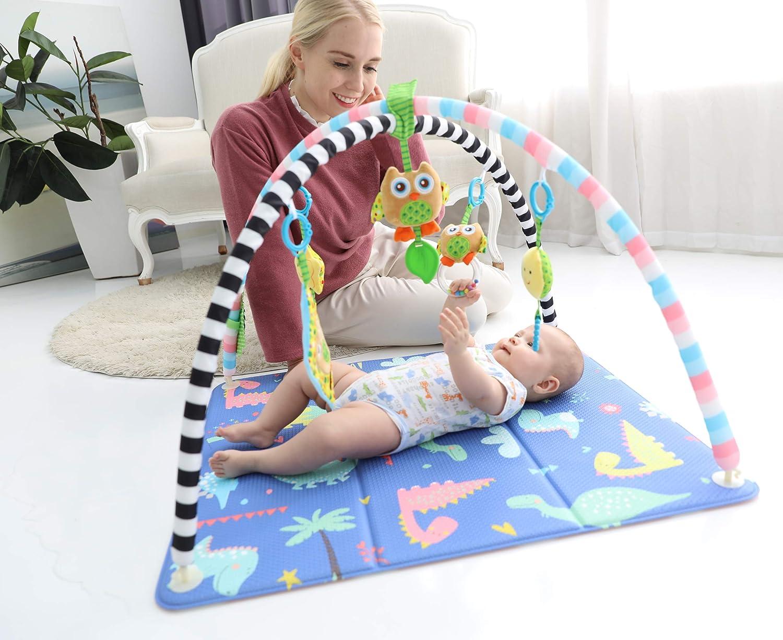 Baby Care Activity Gym Mat Dino