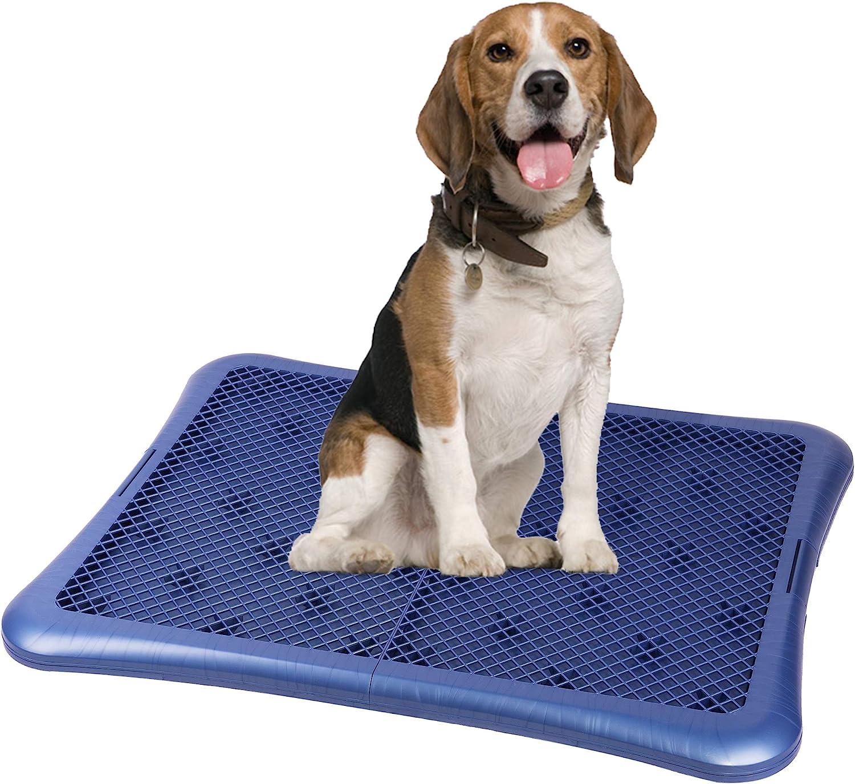Petphabet Puppy Training Pad Holder Floor Protection Dog Pad Holder Mesh Training Tray