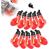 B&C 10Pcs Automatic Poultry Waterer, Chicken Drinking Float Style Gravity Waterers for Chicken Ducks Quail (Hardware Included