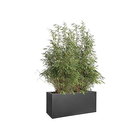 elho 1429023943300 Vivo - Caja de Flores (90 x 90 x 30 cm, con