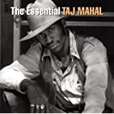 The Essential : Taj Mahal