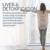 Pure Encapsulations - Silymarin - Hypoallergenic