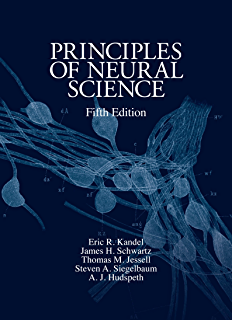 Amazon neuroscience exploring the brain ebook mark f bear principles of neural science fifth edition principles of neural science kandel fandeluxe Choice Image